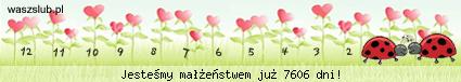 http://suwaczki.waszslub.pl/img-2002100501301330.png