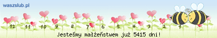http://suwaczki.waszslub.pl/img-2007092201401430.png