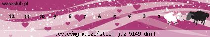 http://suwaczki.waszslub.pl/img-2009062701601630.png
