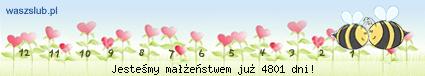 http://suwaczki.waszslub.pl/img-2010061201401430.png