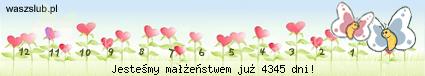 http://suwaczki.waszslub.pl/img-2011091001101130.png